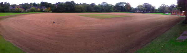 woodward-turfcare-cricket-pitch-renovation.jpg